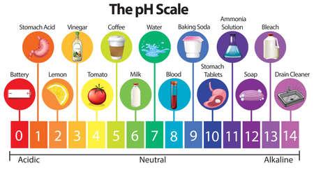 La ilustración de la escala de pH de la ciencia