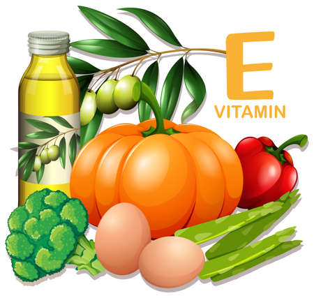 A Set of Vitamin E Food illustration