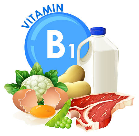 A set of vitamin B1 food illustration