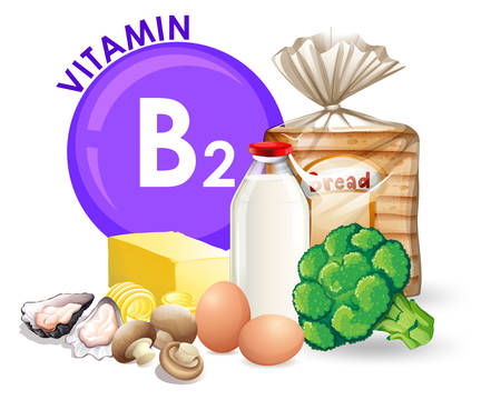 A set of vitamin B2 food illustration Ilustracja