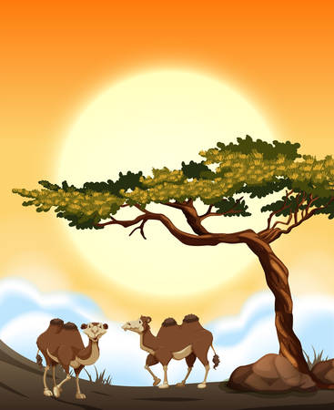 Desert scene with camels illustration