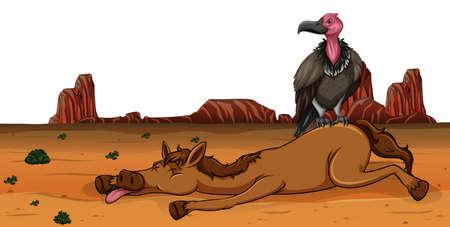 Un buitre en la ilustración de caballo muerto.