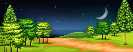 A forest at dark night illustration Illustration