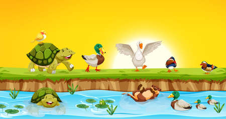 Different animals in pond scene illustration