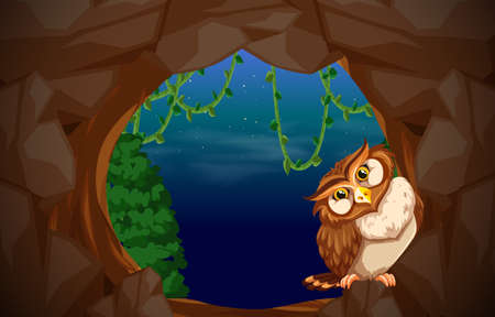 Owl in cave entrance illustration