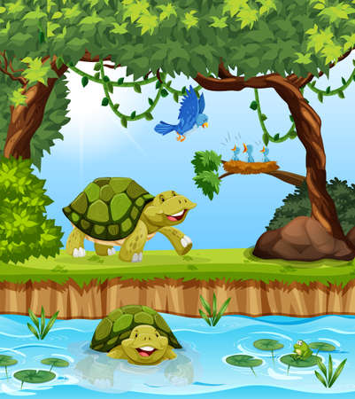 Turtle in the jungle illustration