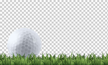 Golf ball on grass  illustration
