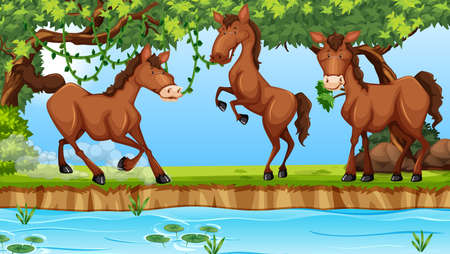 Horses in the nature. Vector illustration