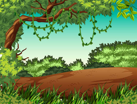 Jungle landscape background scene illustration