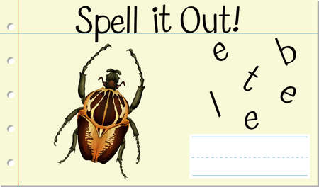 Spell it out beetle illustration 일러스트