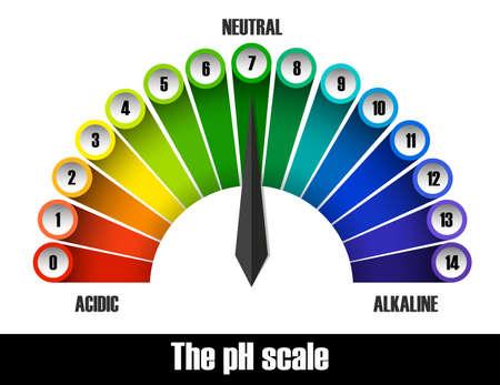 The ph scale chart illustration Illustration