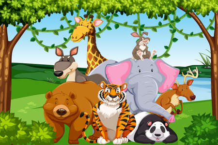 Wild animals in the forest illustration Фото со стока - 111632803