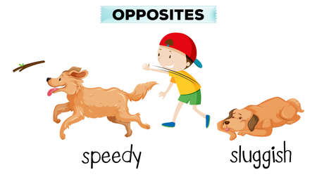english vocabulary opposite word illustration