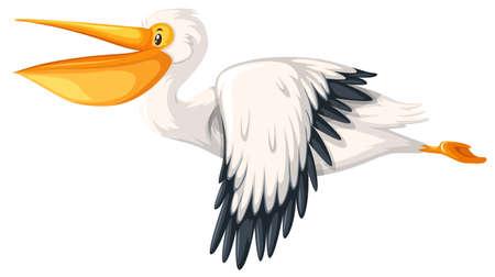 Ein Pelikan, der auf weißer Hintergrundillustration fliegt