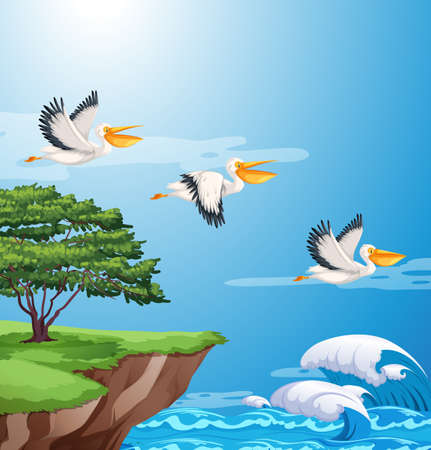 Pelican flying on sky illustration