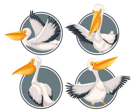 Ein Pelikan auf der Aufkleberschablonenillustration Vektorgrafik