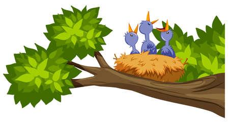 bird nest on tree branch illustration