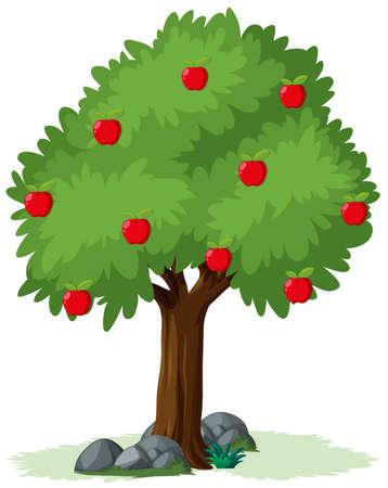 Geïsoleerde appelboom op witte illustratie als achtergrond