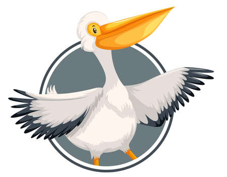 Pelican on circle banner illustration