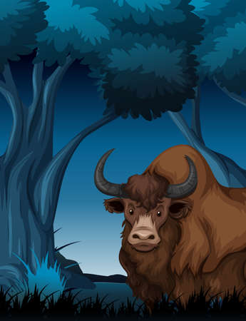 Yak in the dark forest illustration