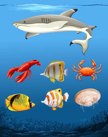 Many fish underwater theme illustration Illustration