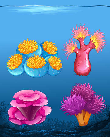 Set of different coral reef illustration