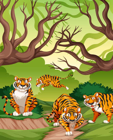 Tigers in jungle scene illustration