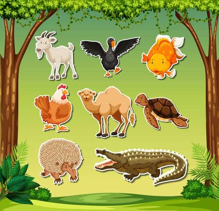 Set of sticker character illustration