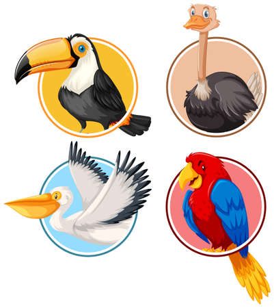 Zestaw ptaka w ilustracji okręgu