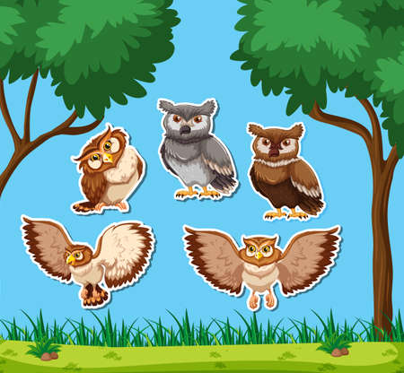 Set of owl sticker illustration