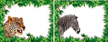 Zebra and leopard on nature frame illustration