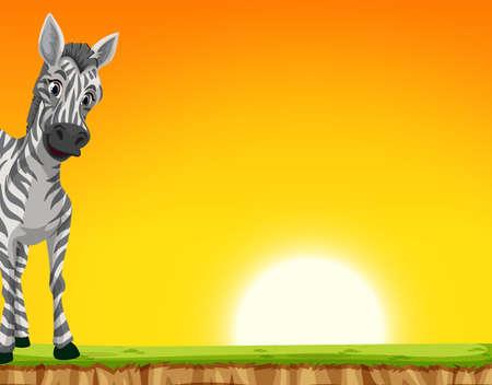 A zebra on sunset background illustration
