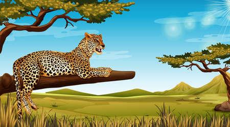 cheetah in tree scene illustration