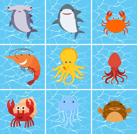 Set of sea creature character illustration
