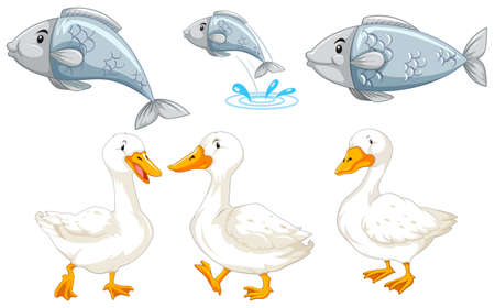 Set of duck and fish illustration