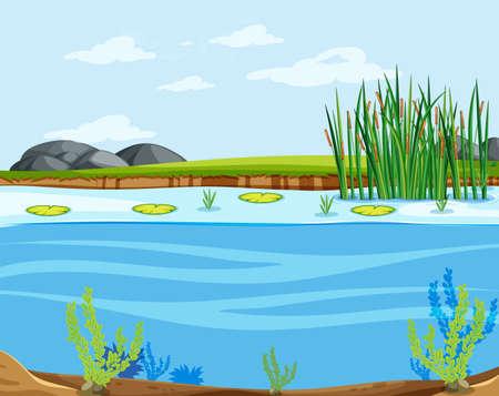 A water lake scene illustration