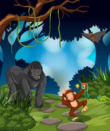 Ape in the rainforest illustration Banque d'images - 124746129