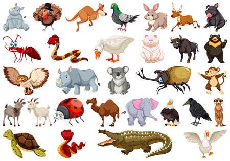 Set of animal character illustration Stock Vector - 118745286