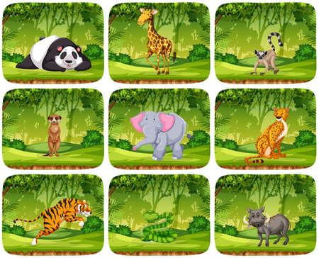 Set of animals in jungle scenens illustration