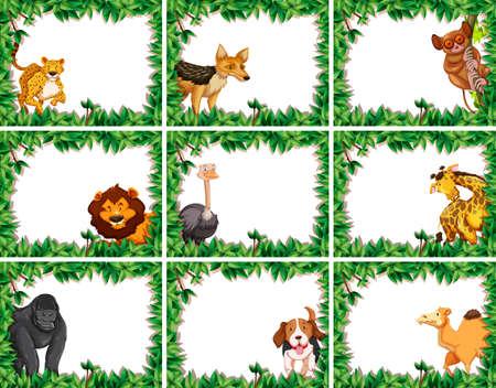 Set of animal frame illustration