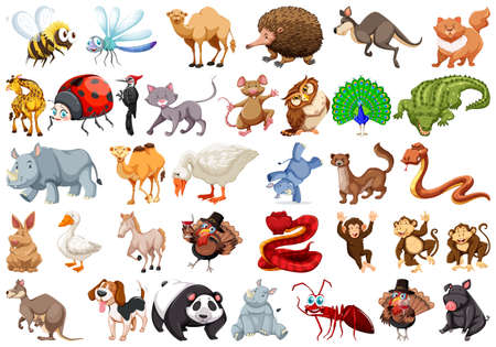 Set of cartoon animal illustration Stock Illustratie
