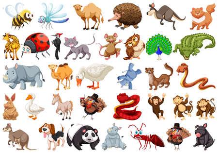 Set of cartoon animal illustration Illustration