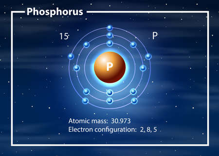 Phosphorus atom diagram concept illustration Vector Illustration