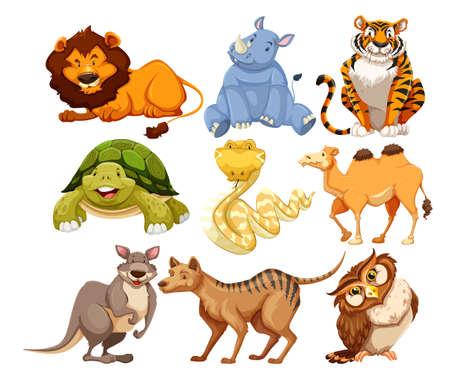 Set of wild animals illustration Vektoros illusztráció