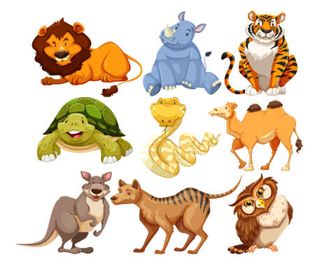 Zestaw ilustracji dzikich zwierząt Ilustracje wektorowe