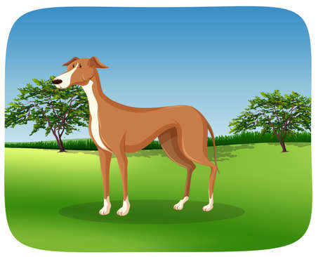 A greyhound dog on nature frame illustration Stock Illustratie