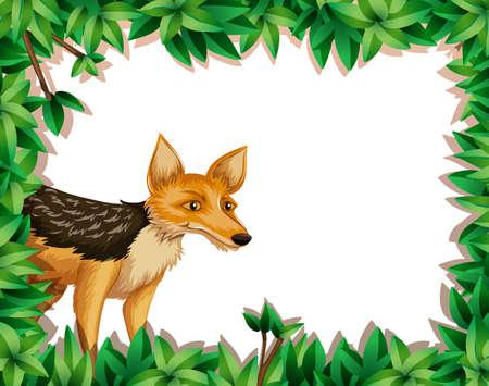 fox in the jungle illustration