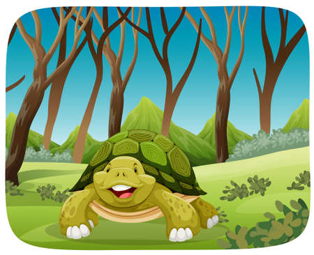 cute turtle in forest illustration