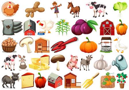 Set of farm element illustration