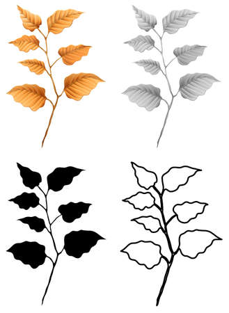 Set of dry leaf illustration Banco de Imagens - 120859402